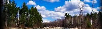 New England Hardwood