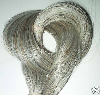 HORSEHAIR  RARE  Gray horse hair crafts/jewerly/ extensions 2 oz horse hair